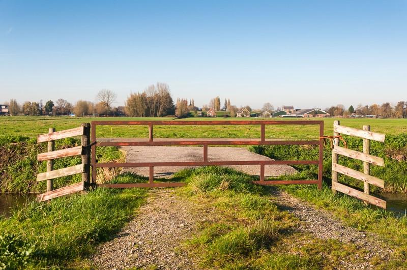 Regelgeving scheuren grasland