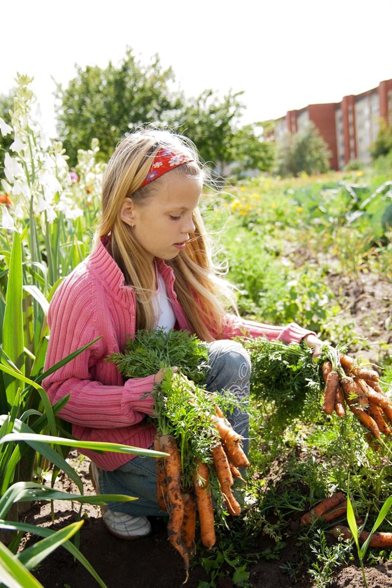 Extra betaling jonge landbouwers 2020