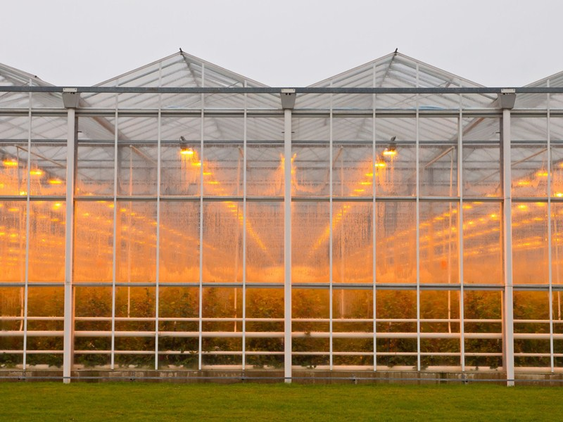 Subsidie investeringen in energie glastuinbouw