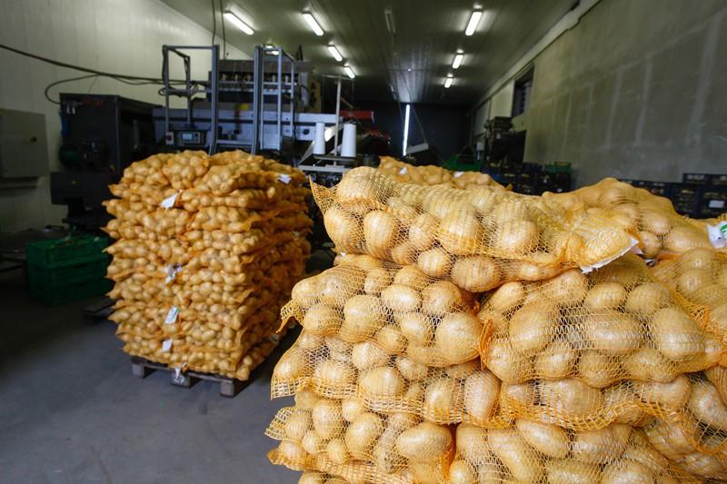 Aanvragen vaststelling steun fritesaardappelen, sierteelt en voedingstuinbouw tot 30 november
